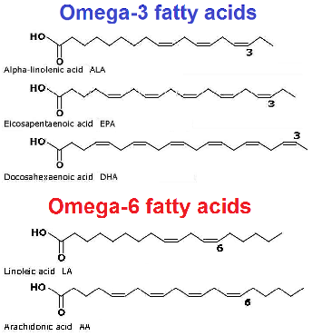 you need essential fatty acids to stay healthy